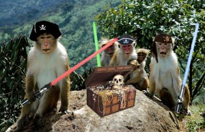 Pirate Monkeys with lightsabers