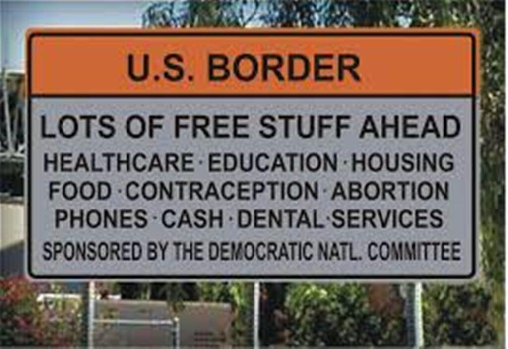 illegal alien Democrat