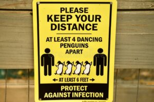 COVID dancing penguins